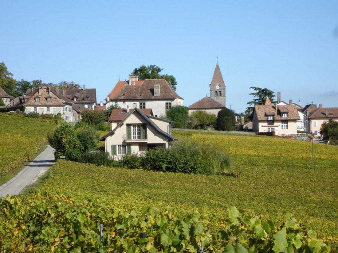 Domaine 4810 et le village de Bursins